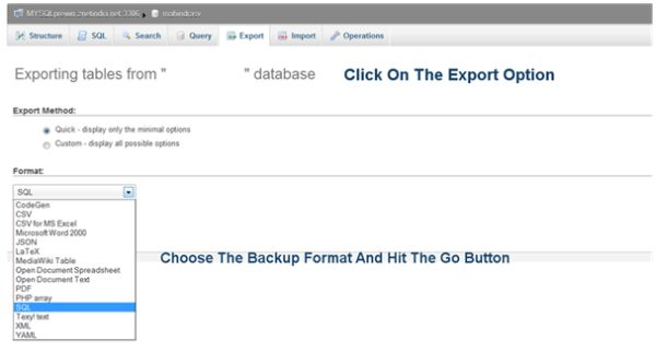 database look for export