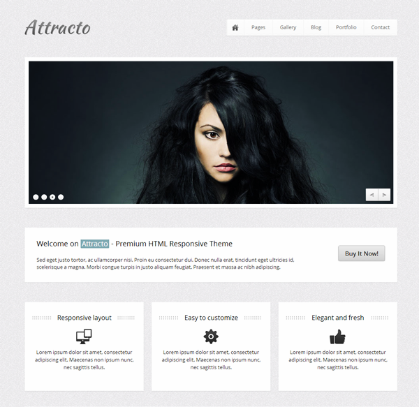 Most Stunning CSS and HTML5 Templates (3)